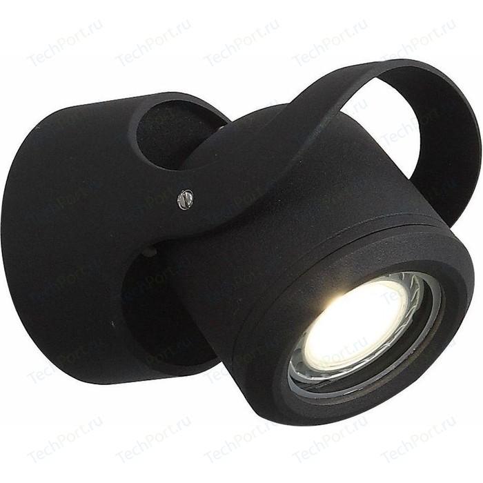 Уличный настенный светодиодный светильник ST-Luce SL093.401.01