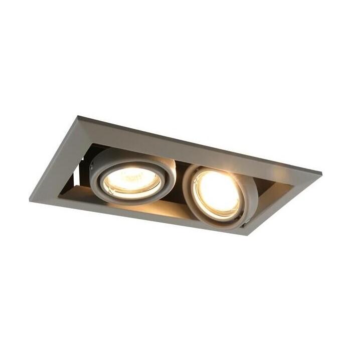Встраиваемый светильник Arte Lamp A5941PL-2GY