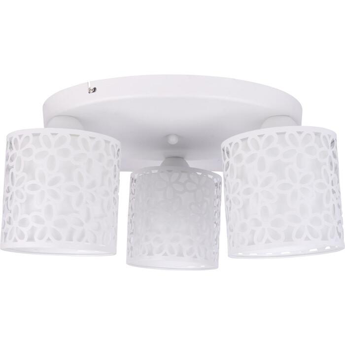 Потолочная люстра Arte Lamp A8349PL-3WH