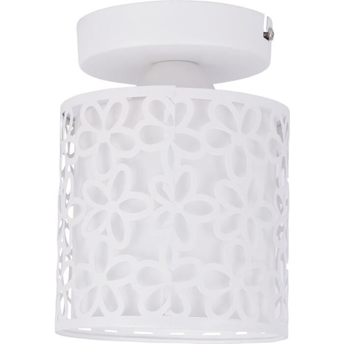 Потолочный светильник Arte Lamp A8349PL-1WH