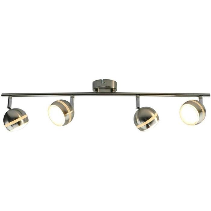Светодиодный спот Arte Lamp A6009PL-4SS