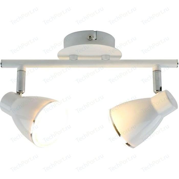 Фото - Светодиодный спот Arte Lamp A6008PL-2WH спот arte lamp compass a3102al 2wh