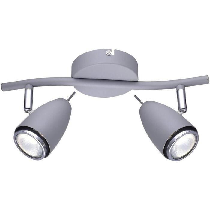 Спот Arte Lamp A1966AP-2GY спот arte lamp a1966ap 2gy