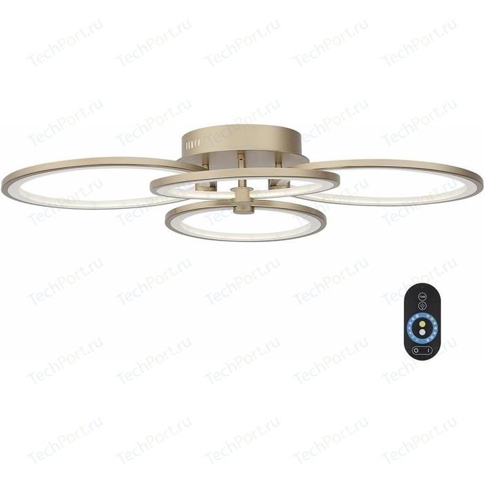 Потолочная светодиодная люстра с пультом ST-Luce SL867.202.04