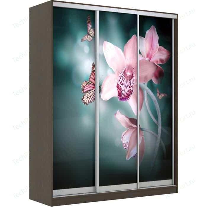 Шкаф-Купе Престиж-Купе Рико 3д фотопечать Орхидея 0308-333