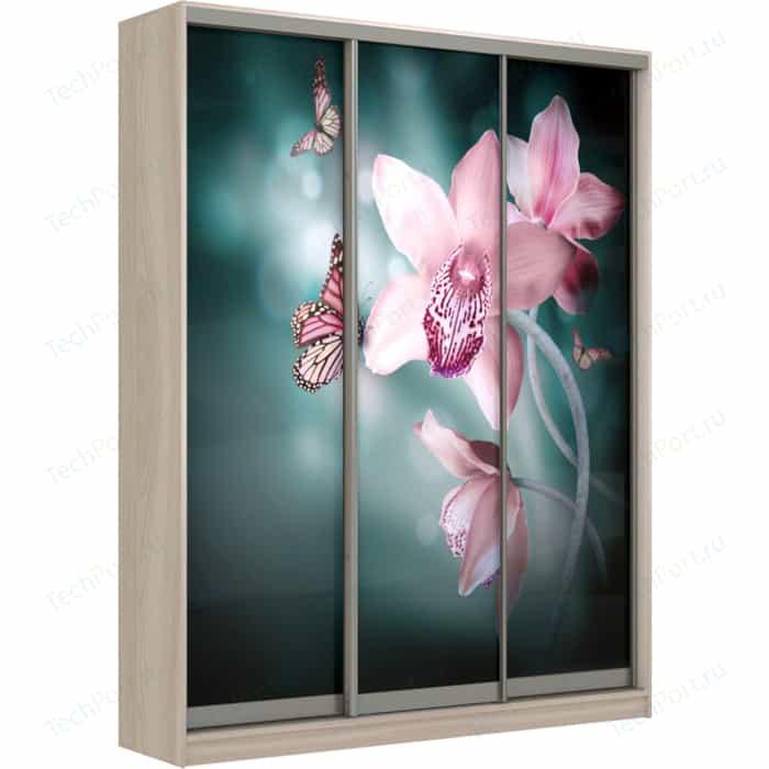 Шкаф-Купе Престиж-Купе Рико 3д фотопечать Орхидея 0308-334