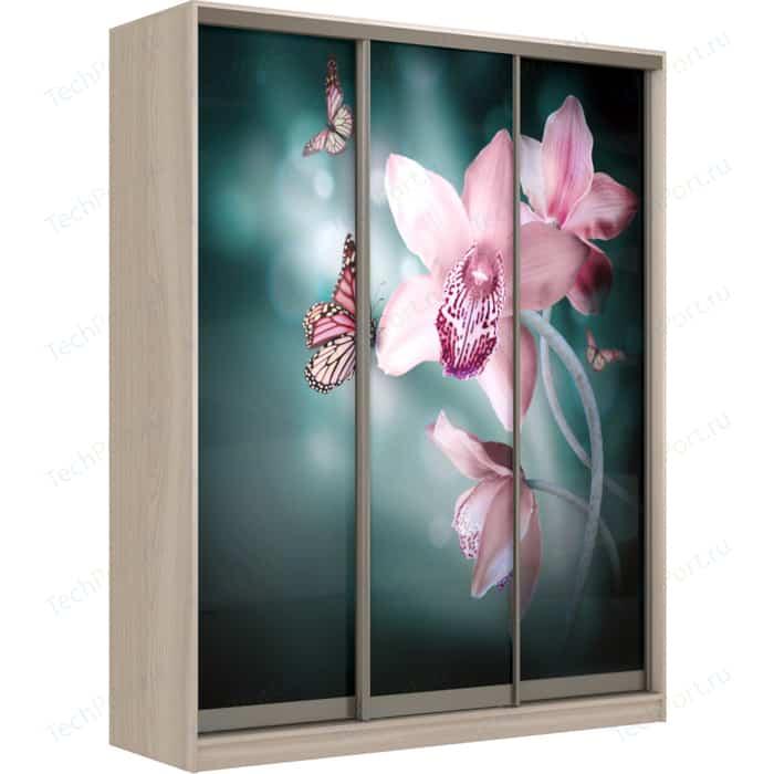 Шкаф-Купе Престиж-Купе Рико 3д фотопечать Орхидея 0308-340