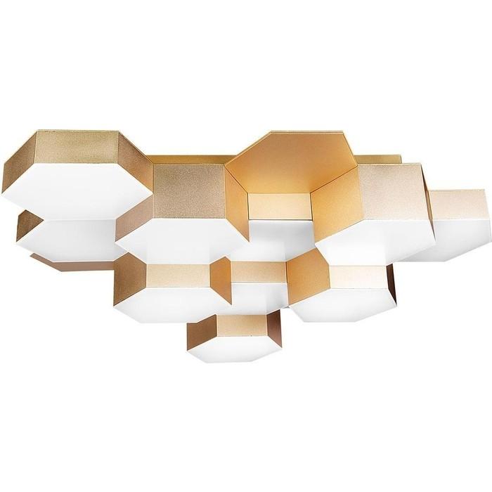Потолочная светодиодная люстра Lightstar 750121