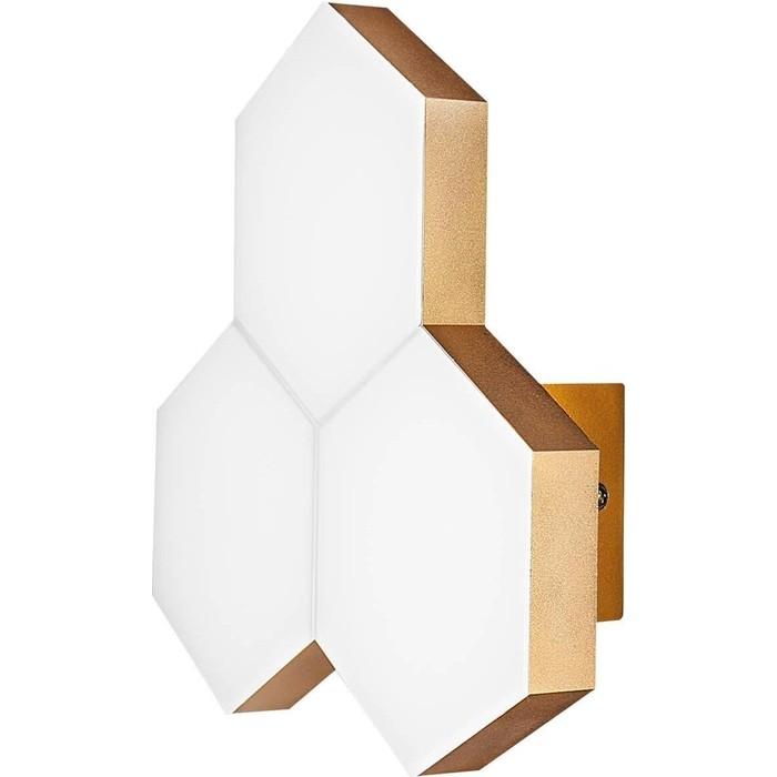 Настенный светодиодный светильник Lightstar 750631