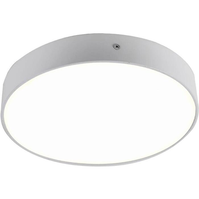 Фото - Потолочный светодиодный светильник Favourite 2065-30C потолочный светодиодный светильник favourite 2602 3c