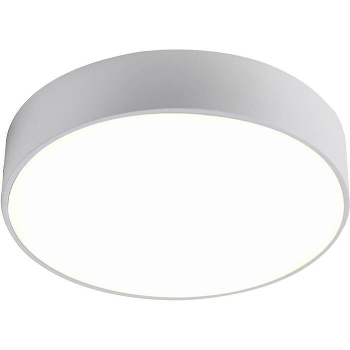 Потолочный светодиодный светильник Favourite 2065-24C