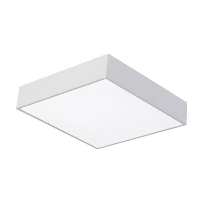 Потолочный светодиодный светильник Favourite 2066-24C