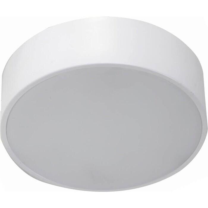 Фото - Потолочный светодиодный светильник Favourite 2065-16C потолочный светодиодный светильник favourite 2602 3c