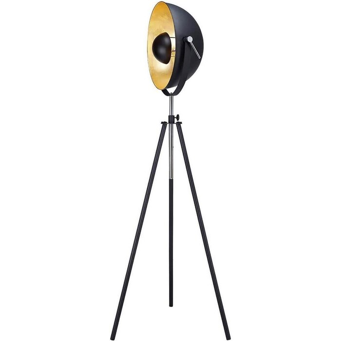 Торшер Lussole LSP-9824