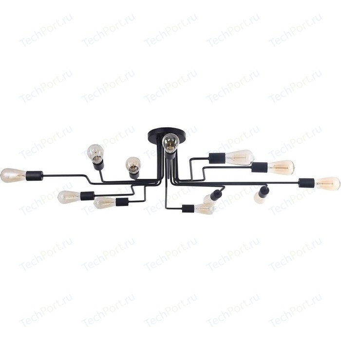 Потолочная люстра Maytoni T532CL-12B murray w key words 12b mountain adventure