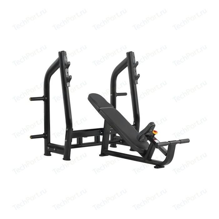 Cкамья для жима Bronze Gym H-025 (черный) с положительным наклоном