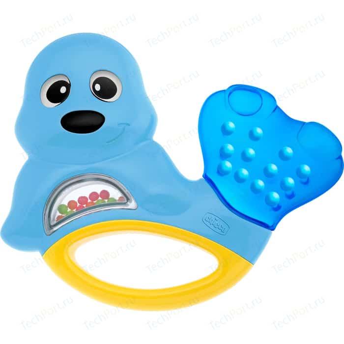 Игрушка-погремушка Chicco Морской котик 39177 игрушка погремушка chicco жираф