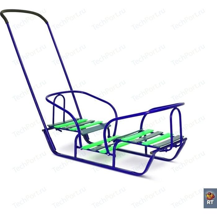 коляски для двойни и погодок Санки RT для двойни Лучшие друзья - зеленые (2615)