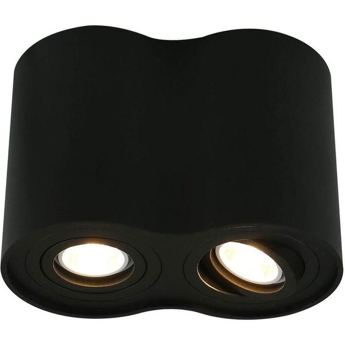 Потолочный светильник Arte Lamp A5644PL-2BK