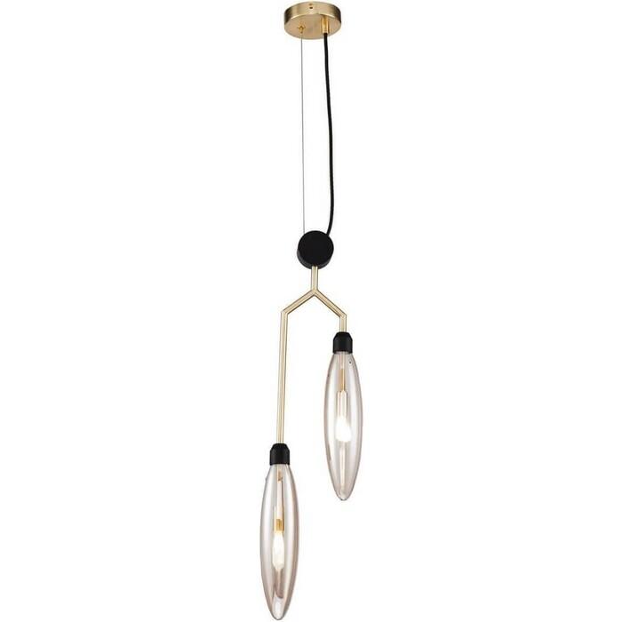 Подвесной светильник Maytoni MOD012PL-02G