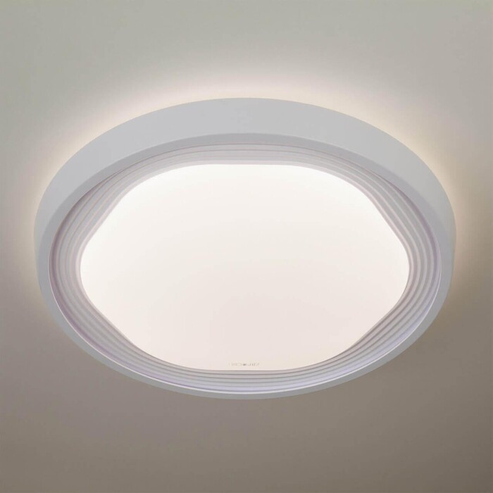 Потолочный светодиодный светильник Eurosvet 40005/1 LED белый
