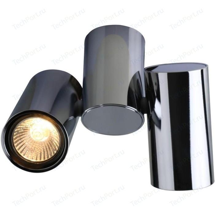 Потолочный светильник Divinare 1354/02 PL-2