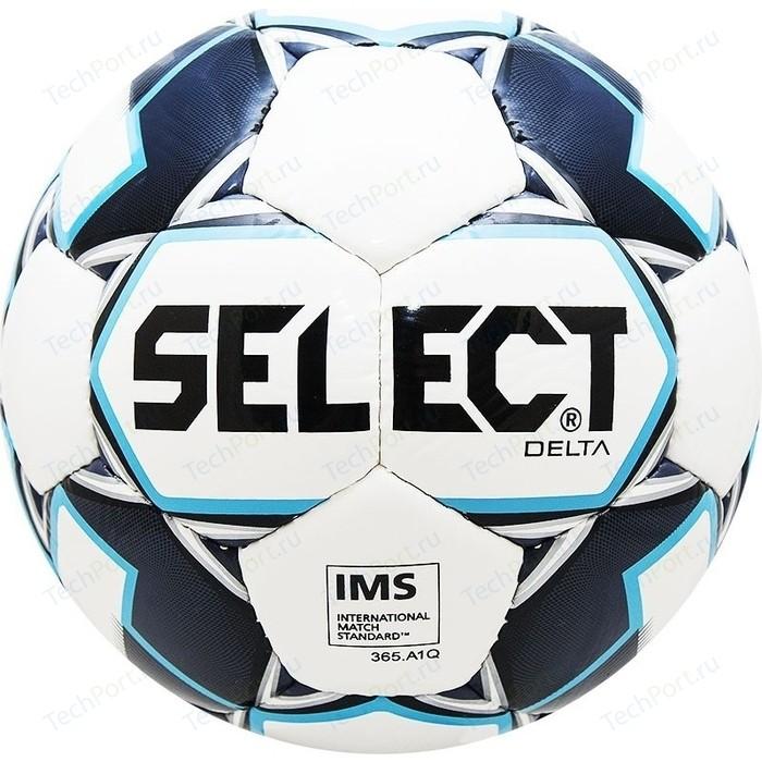 цена Мяч футбольный Select Delta 815017-009 р. 5 онлайн в 2017 году