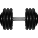 Купить Гантель профессиональная MB Barbell ''Профи'' черная 33.5 кгтехнические характеристики фото габариты размеры