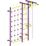 Купить Детский спортивный комплекс Пионер С3СМ пурпурно/жёлтый отзывы покупателей специалистов владельцев