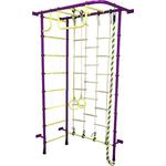 Купить Детский спортивный комплекс Пионер 8ЛМ пурпурно/жёлтый отзывы покупателей специалистов владельцев