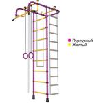 Купить Детский спортивный комплекс Пионер АМ пурпурно/желтый купить недорого низкая цена