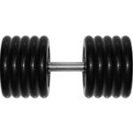 Купить Гантель MB Barbell Профи 53,5 кг купить недорого низкая цена