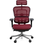 Кресло эргономичное Comfort Seating Group EHPE-AB-HAM (Д) KMD-37 ergohuman plus elite burgundy