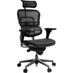 Кресло эргономичное Comfort Seating Group EHS-HAM W09-01 ergohuman standart black