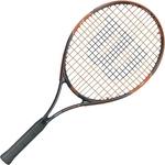 Купить Ракетки для большого тенниса Wilson Burn Team 25 GR00 (WRT209800) купить недорого низкая цена
