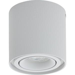 Потолочный светильник Denkirs DK2001-WH