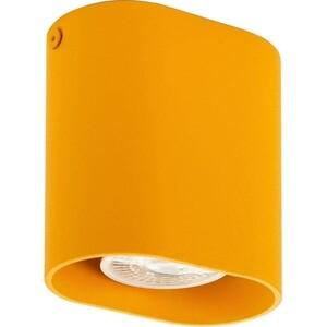 Потолочный светильник Denkirs DK2005-YE цена