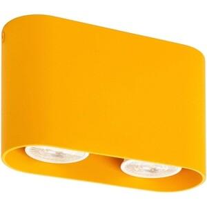 Потолочный светильник Denkirs DK2006-YE