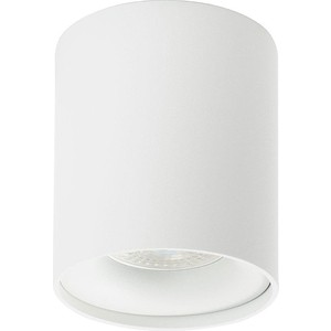 Потолочный светильник Denkirs DK2032-WH