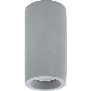 Потолочный светильник Denkirs DK5001-CE