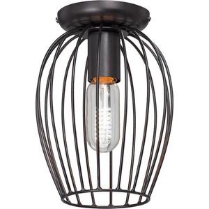 Потолочный светильник Vitaluce V4293-1/1PL