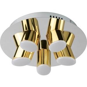 Потолочная светодиодная люстра DeMarkt 609013505