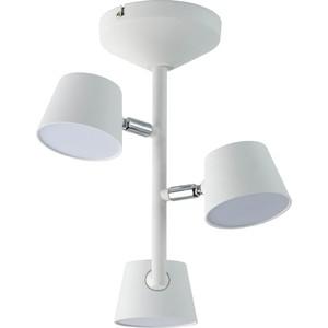 Потолочная светодиодная люстра DeMarkt 717010903