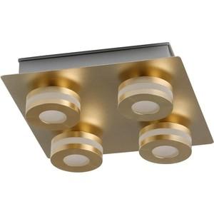 Потолочный светодиодный светильник DeMarkt 549010904