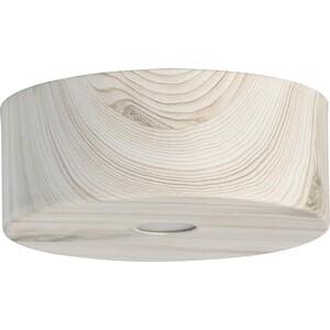 Потолочный светодиодный светильник DeMarkt 712010601