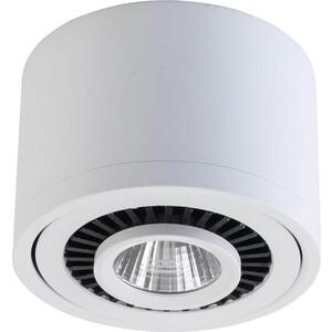 Потолочный светодиодный светильник DeMarkt 637017301
