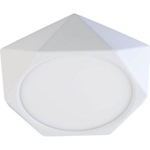 Потолочный светодиодный светильник DeMarkt 702011101