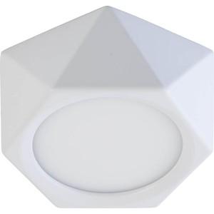 Потолочный светодиодный светильник DeMarkt 702011001