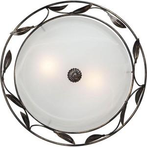 Потолочный светильник Vitaluce V6858/2A
