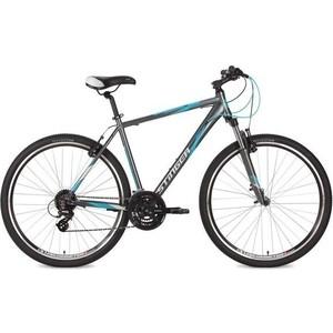 Велосипед Stinger 28 Campus Std 56 серый TX800/M310/EF510